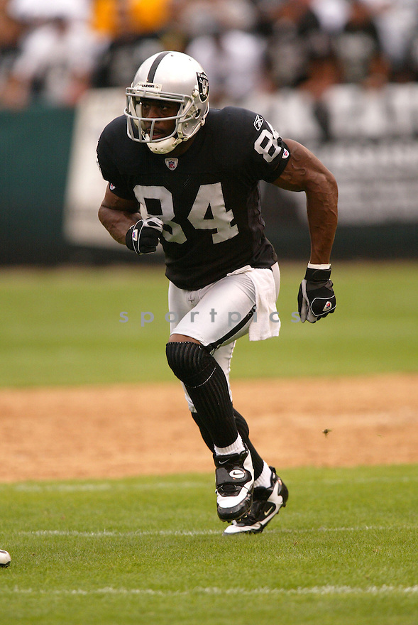 JERRY PORTER,  of the Oakland Raiders, in action during the Raiders game against the Cleveland Browns game on September 23, 2007 in Oakland, CA...Raiders win 26-24.........