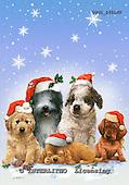 GIORDANO, CHRISTMAS ANIMALS, WEIHNACHTEN TIERE, NAVIDAD ANIMALES, paintings+++++,USGI2451MV,#XA# dogs,puppies