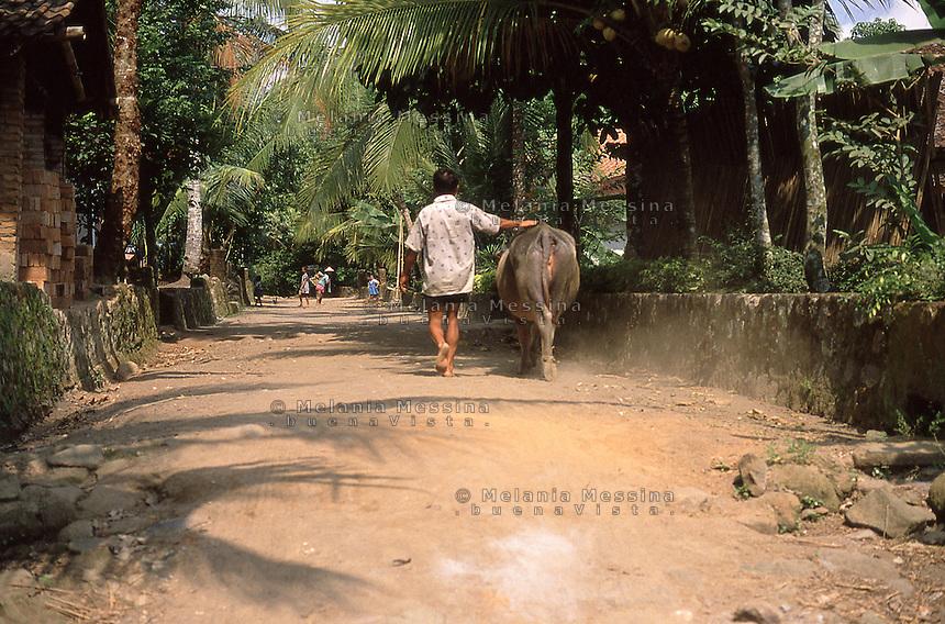 Sokometrò village in Central Java