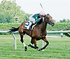Lady Artemis winning at Delware Park on 7/30/12