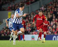30th November 2019; Anfield, Liverpool, Merseyside, England; English Premier League Football, Liverpool versus Brighton and Hove Albion; Roberto Firmino of Liverpool runs at the Brighton defence with the ball  - Strictly Editorial Use Only. No use with unauthorized audio, video, data, fixture lists, club/league logos or 'live' services. Online in-match use limited to 120 images, no video emulation. No use in betting, games or single club/league/player publications