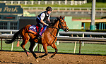 October 30, 2019: Breeders' Cup Filly & Mare Turf entrant Iridessa, trained by Joseph O'Brien, exercises in preparation for the Breeders' Cup World Championships at Santa Anita Park in Arcadia, California on October 30, 2019. Scott Serio/Eclipse Sportswire/Breeders' Cup/CSM