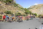 The leading riders including Nairo Quintana (COL) Movistar Team, Emanuel Buchmann (GER) Bora-Hansgrohe and Jon Izaguirre Insausti (ESP) Bahrain-Merida on the slopes of Sierra de la Alfaguara near the finish of Stage 4 of the La Vuelta 2018, running 162km from Velez-Malaga to Alfacar, Sierra de la Alfaguara, Andalucia, Spain. 28th August 2018.<br /> Picture: Eoin Clarke | Cyclefile<br /> <br /> <br /> All photos usage must carry mandatory copyright credit (&copy; Cyclefile | Eoin Clarke)