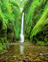 Oneonta Falls in spring. Columbia River Gorge National Scenic Area. Oregon