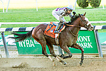 "Oct 05, 2019 : Tiz the Law with Manuel Franco, win the $500,000 ""Win and You're In""  Champagne Stakes, for two year olds, at Belmont Park, in Elmont, NY, October 05, 2019. Sue Kawczynski_ESW_CSM,"