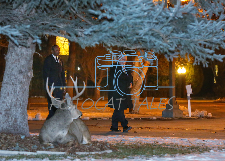 A buck watches as Nevada Assembly members Harvey Munford, left, and Randy Kirner return to the Legislative Building after notifying the Governor the Assembly is convened and ready for business in Carson City, Nev., on Wednesday, Dec. 16, 2015. Gov. Brian Sandoval called lawmakers into a special session Wednesday to consider a package of tax incentives to bring the startup electric car manufacturer Faraday Future to Southern Nevada. (Cathleen Allison/Las Vegas Review-Journal)