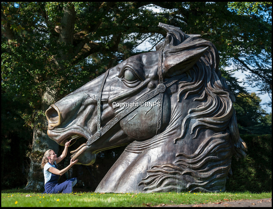 BNPS.co.uk (01202 558833)<br /> Pic: PhilYeomans/BNPS<br /> <br /> A large step up from a garden gnome...Lindsay Hoadley cleans up the enormous bronze horse.<br /> <br /> This magnificent equine sculpture is being sold at the annual Summer Place auction of garden statues near Billingshurst in West Sussex.<br /> <br /> The enormous bronze head was commissioned for Camden Lock and its flared nose bears the patina of thousands of hands brushing it for good luck in the bustling market.<br /> <br /> The striking sculpture by architect John Dickenson is thought to be based on French artist David's famous painting of Napoleon crossing the alps and was created as a memorial to the famous market's origins as stables and a horse hospital owned by Pickfords removals.<br /> <br /> Those who have a garden big enough will have to splash out &pound;25,000 to secure the 15 ft high bronze statue.