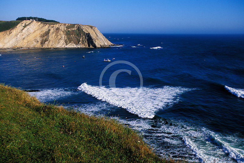 California, Point Arena, Coastal bluffs and Arena Cove