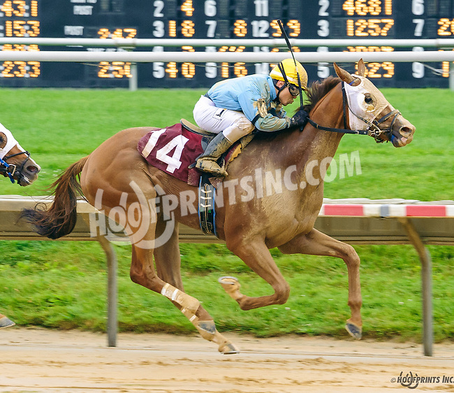 Roy Aire winning before being disqualified at Delaware Park on 6/16/16
