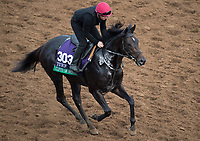 DEL MAR, CA - NOVEMBER 02: Cliffs of Moher, owned by Mrs. John Magnier, Michael Tabor, Derrick Smith  & Markus Jooste and trained by Aidan P. O'Brien, exercises in preparation for Longines Breeders' Cup Turf at Del Mar Thoroughbred Club on November 2, 2017 in Del Mar, California. (Photo by Michael McInally/Eclipse Sportswire/Breeders Cup)