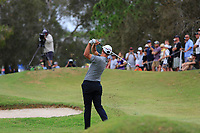 Adam Scott (AUS) on the 18th fairway during Round 4 of the Australian PGA Championship at  RACV Royal Pines Resort, Gold Coast, Queensland, Australia. 22/12/2019.<br /> Picture Thos Caffrey / Golffile.ie<br /> <br /> All photo usage must carry mandatory copyright credit (© Golffile   Thos Caffrey)