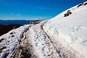 Vehicle track up to Tukino Alpine Village on the lower slopes of Mt Ruapehu, Tongariro National Park, Central Plateau, North Island, New Zealand