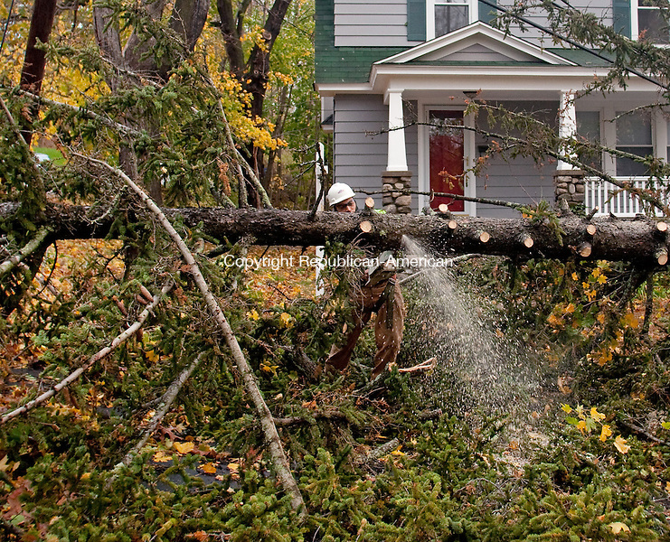 WATERBURY, CT-30 October 2012-103012BF02-- David Delgado from Waterbury, an employee of Lewis Tree Service, Inc., works at removing a White Pine tree that fell Monday night at 24 Vernon Street in Waterbury. The tree broke at it's roots according to Delgado and fell across power lines. The remnants of Hurricane Sandy are still being felt across Connecticut Tuesday as the cleanup begins.  Bob Falcetti Republican-American