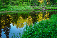 Reflections in the East Branch of the Sacandaga River in the Siamese Ponds Wilderness Area in the Adirondack Mountains Of New York State