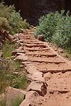 Bright Angel Trail near Indian Gardens, Grand Canyon National Park, Arizona . John offers private photo tours in Grand Canyon National Park and throughout Arizona, Utah and Colorado. Year-round.