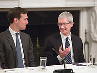 Presidential advisor Jared Kushner (left) speaks with Apple CEO Tim Cook (right) during an American Technology Council meeting at The White House in Washington, DC, June 19, 2017. <br /> Credit: Chris Kleponis / CNP /MediaPunch