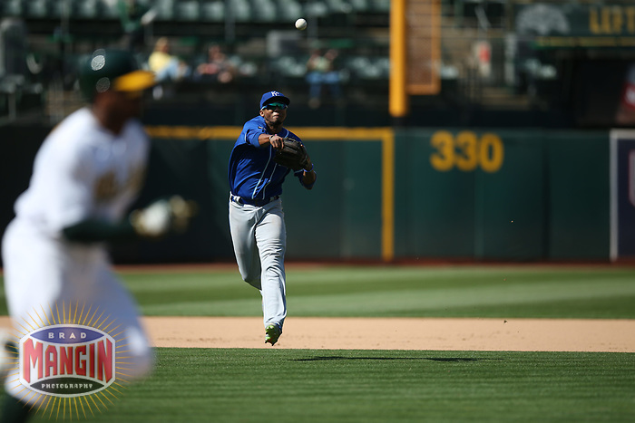 OAKLAND, CA - AUGUST 16:  Alcides Escobar #12 of the Kansas City Royals makes a play at shortstop against the Oakland Athletics during the game at the Oakland Coliseum on Wednesday, August 16, 2017 in Oakland, California. (Photo by Brad Mangin)