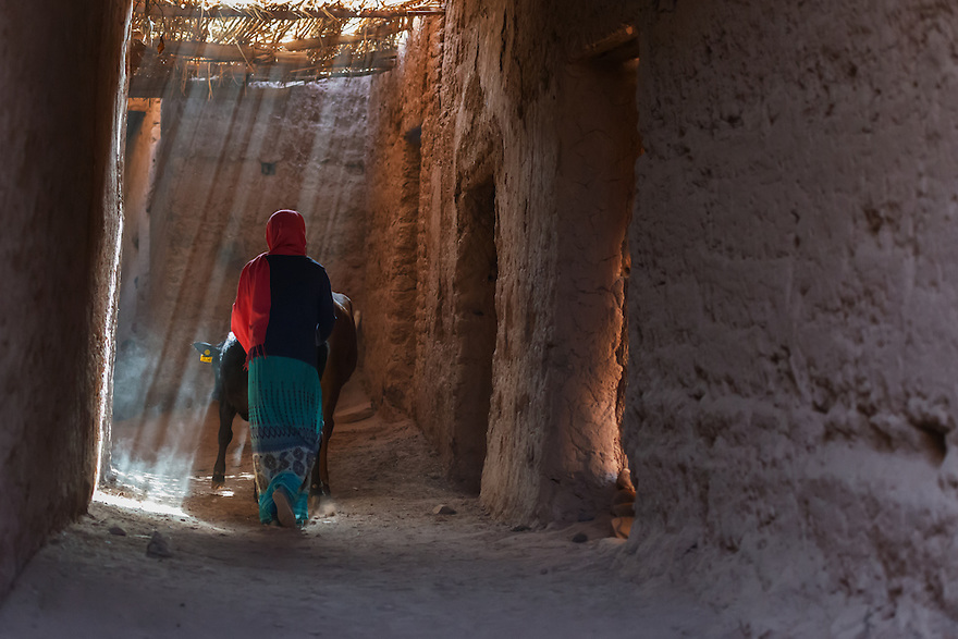 A Moroccan woman walks with cows inside a dusty Kasbah.