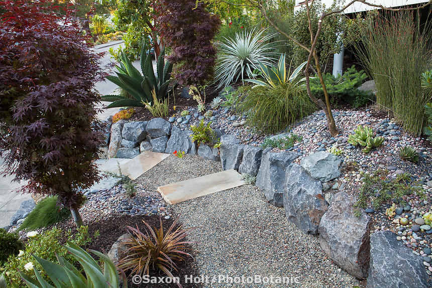 Stepping stone slab path entry walkway into drought tolerant front yard with boulder retaining wall, gravel mulch, and succulents; California garden - Carol Brant