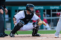 Indianapolis Indians catcher Jacob Stallings (32) during an International League game against the Columbus Clippers on April 29, 2019 at Victory Field in Indianapolis, Indiana. Indianapolis defeated Columbus 5-3. (Zachary Lucy/Four Seam Images)