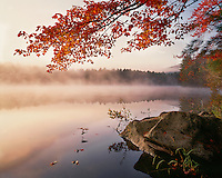 Foggy sunrise light on Crane Pond in the Pharoah Lake Wilderness; Adirondack Park & Preserve, NY