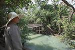 Hängebrücke im Nationalpark Don Yok nahe Buon Ma Thuot, Zentrales Bergland, Vietnam