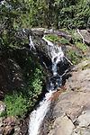 Sewell Falls Dorrigo NP