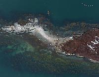 Drone Maine hunt