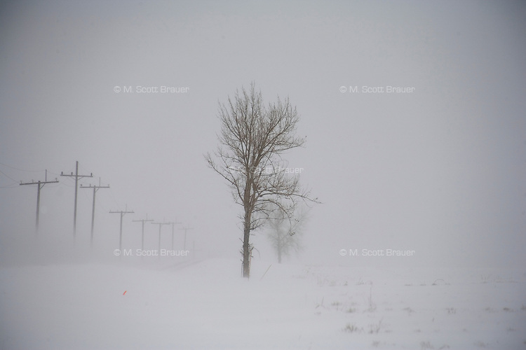 Trees and powerlines stand above a snowy field on the road to Sand Coulee outside Great Falls, Montana, USA.