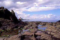 Haida Gwaii (Queen Charlotte Islands), Northern BC, British Columbia, Canada - Rocky Shoreline at Tow Hill along McIntyre Bay, Naikoon Provincial Park, Graham Island