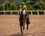 MAY 27: Vasilika and Flavien Prat win the Gamley Stakes at Santa Anita Park in Arcadia, California on May 27, 2019. Evers/Eclipse Sportswire/CSM