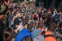 Maglia Rosa / overall leader Tom Dumoulin (NED/Sunweb) up the final steep climb towards the Citt&agrave; Alta in Bergamo<br /> <br /> Stage 15: Valdengo &rsaquo; Bergamo (199km)<br /> 100th Giro d'Italia 2017