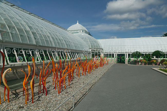 Reeds, Cattails, and Grass - Artwork of glass artisan Dale Chihuly on display at the New York Botanical Garden in 2006.