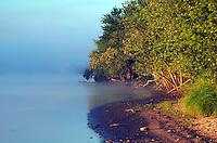 Mississippi River shoreline, Port Louisa National Wildlife Refuge, Louisa County, Iowa