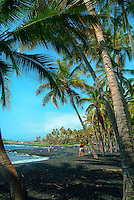People relax at Punalu'u Beach (or Black Sand Beach), Big Island of Hawai'i.