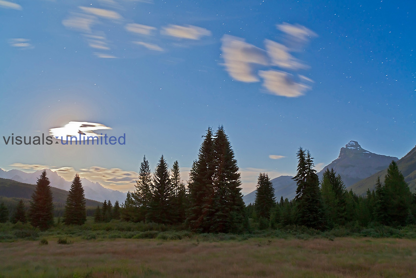 Moose Meadows, Banff, Alberta, Canada by the light of a Full Moon