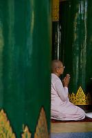 Nun in prayers, Shwedagon Pagoda, Yangon