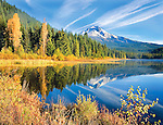 Mt. Hood reflecting in Trillium Lake in the autumn, Oregon, USA