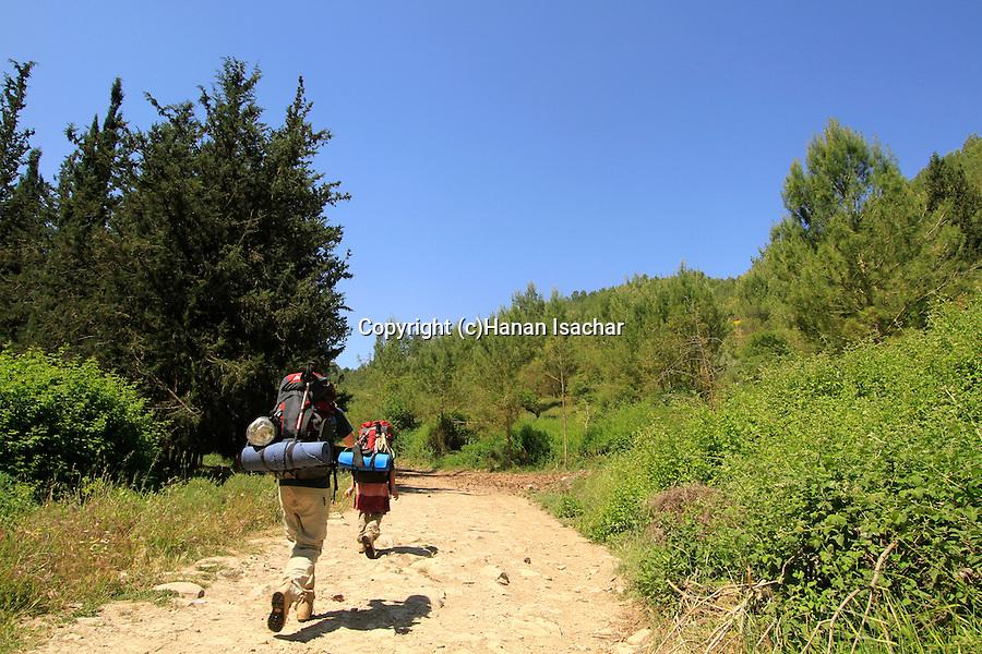 Israel, Upper Galilee, hiking the Israel Trail in Wadi Dishon