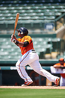 GCL Orioles catcher Jean Carrillo (36) at bat during a game against the GCL Twins on August 11, 2016 at the Ed Smith Stadium in Sarasota, Florida.  GCL Twins defeated GCL Orioles 4-3.  (Mike Janes/Four Seam Images)