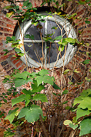 Incubators, restored 1995-97, Paul Chemetov and Borja Huidobro, Jardin des Plantes, Museum National d'Histoire Naturelle, Paris, France. Detail showing brickwork and climbing plants around a porthole window.