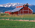 Wallowa County, OR   <br /> Morning sun on the red &quot;Stock Farm&quot; barn (1913) with Chief Joseph Mountain rising in the distance