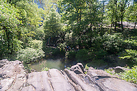 The view from the top of the waterfall feature in the Hallett Nature Sanctuary in Central Park in New York on Monday, May 16, 2016. Closed since 1934 the  4 acre natural landscape in the middle of the city is a bird sanctuary and will be opened for limited times to the public only 20 people entering at a time. Hundreds lined up to be let in to admire the landscape. (© Richard B. Levine)