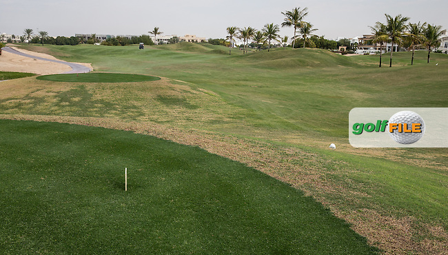 12th tee at The Address Montgomerie Golf Club, Dubai, United Arab Emirates.  27/01/2016. Picture: Golffile | David Lloyd<br /> <br /> All photos usage must carry mandatory copyright credit (&copy; Golffile | David Lloyd)
