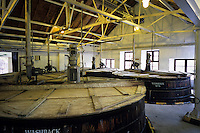 """Europe/Grande-Bretagne/Ecosse/Moray/Speyside/Keith : Distillerie Strathisia Whisky Chivas - Fermentation du malt dans des cuves en bois """" les wash backs"""" brassé pendant des heures le mélange donne un liquide clair appelé wash"""