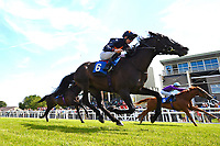 """Winner of The Willton Homes """"Confined"""" Novice Stakes (Colts & Geldings) Dive for Gold ridden by Robert Havlin and trained by John Gosden during Afternoon Racing at Salisbury Racecourse on 17th May 2018"""