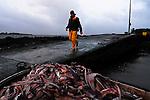 P&ecirc;cheur de Crabe dans le golfe du Morbihan.<br /> Le crabe vert est destin&eacute; &agrave; l'exportation vers l'Espagne.