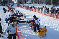 Mitch Seavey gives high-fives to fans lining the chute on Willow Lake as he leaves the restart of the Iditarod sled dog race Sunday, March 3, 2013.