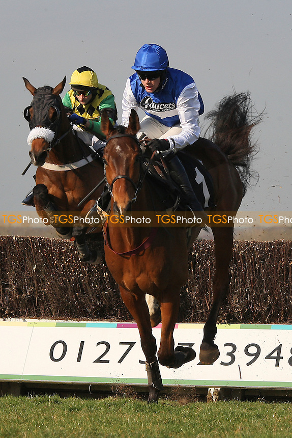 Race winner Relax ridden by Aidan Coleman in action in the SVS Securities Preferred Partnership For IFAs Novices Handicap - Horse Racing at Plumpton Racecourse, East Sussex - 12/03/12 - MANDATORY CREDIT: Gavin Ellis/TGSPHOTO - Self billing applies where appropriate - 0845 094 6026 - contact@tgsphoto.co.uk - NO UNPAID USE.