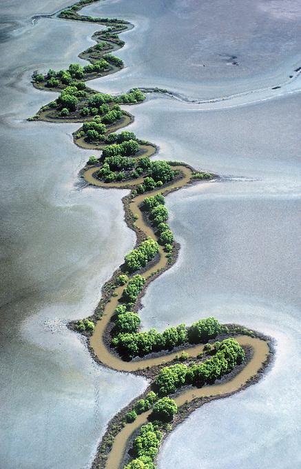 Coastal floodplains in the Top End of Australia, Northern Territory